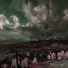 "photo ""Scenic View"""