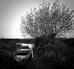 "photo ""Lost"""