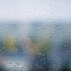 "фото ""nach dem Regen..."""