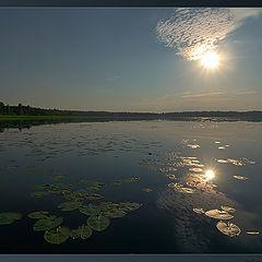 """фото """"Утро на озере"""""""