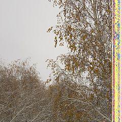 """фото """"падал теплый снег, струился сладкий газ ...."""""""