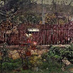 "photo ""Rainly morning..."""