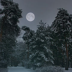 "photo ""Moon"""