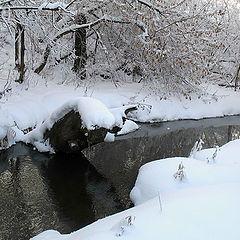 """фото """"Зима..."""""""