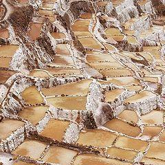 "photo ""Salt Path"""