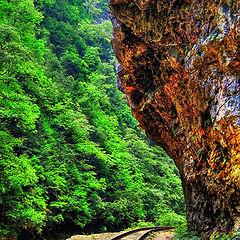 """фото """"iron path"""""""