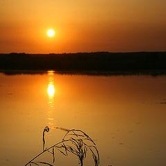 """фото """"Закат на реке"""""""
