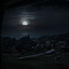 """фото """"Затерянный мир"""""""
