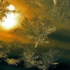 """фото """"мороз и солнце"""""""