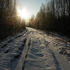 "фото ""Солнечная дорога."""