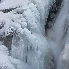 """фото """"В стране льда"""""""