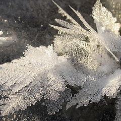 "фото ""SnowDrawing"""