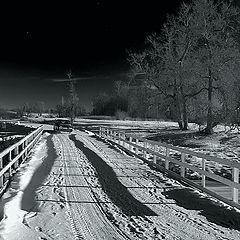"photo ""Towards the North Star."""