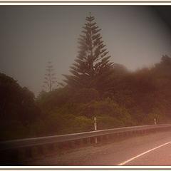 "photo ""Misty Highway"""