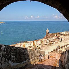 "фото ""puerto rico"""