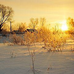 "photo ""winter morning II"""