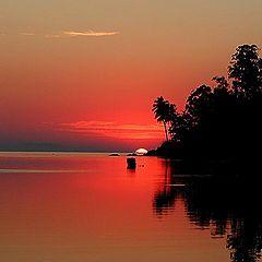 """photo """"Paradise"""""""