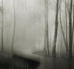 """photo """"melancholy"""""""
