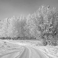 """фото """"Морозный поворот"""""""