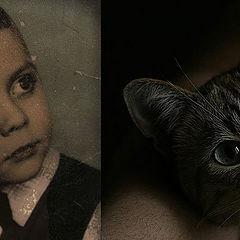 """фото """"Кастинг на мюзикл """"Cats"""""""""""