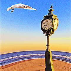"photo ""Seagull and clock"""