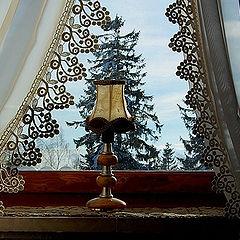 """фото """"За окном зимний лес"""""""