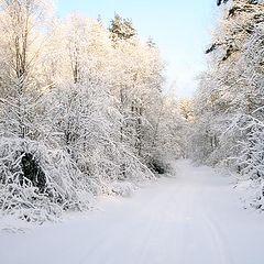 """фото """"русская зима"""""""