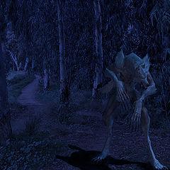"""photo """"Werwolf"""""""