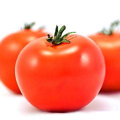 "photo ""Tomatoes"""