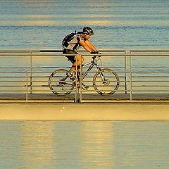 "фото ""Enjoy the ride"""