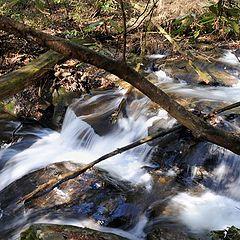 """photo """"Cascades along the river"""""""