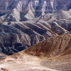 "photo ""~ Negev, the  Land of Abraham 2# ~"""