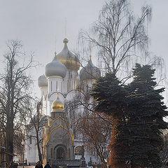 """фото """"Морозный день в Новодевичьем"""""""