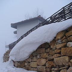 "photo ""Winter fragment ..."""