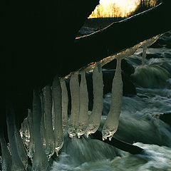 """photo """"The Icicle"""""""