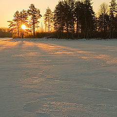 """photo """"Winter nuances"""""""