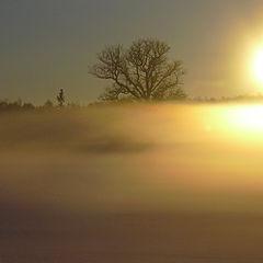 """фото """"... sunset fog II"""""""