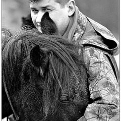 """фотоальбом """"Horses"""""""