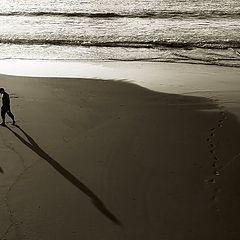 """фото """"Lead the Way"""""""