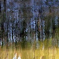 "photo ""reflection"""