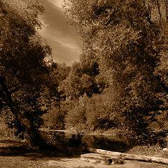 """photo """"местечко у реки"""""""