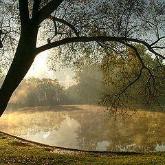 """фото """"Утром в парке (римейк/репост)"""""""