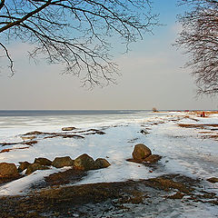 """photo """"View to Finnish Bay from Alexandria park"""""""