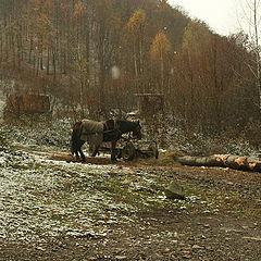 """фото """"Winter falls"""""""