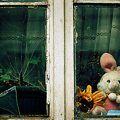 """photo """"... while the Easter rabbit was trying to save his beloved ..."""""""