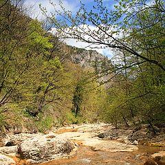 """фото """"Весна в Большом каньоне Крыма"""""""