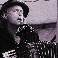 "photo ""Accordionist"""