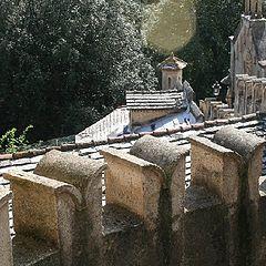 "photo ""the old castle, details"""