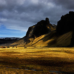 "фото ""Spring in iceland"""