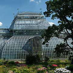 "photo ""Botanic Garden"""